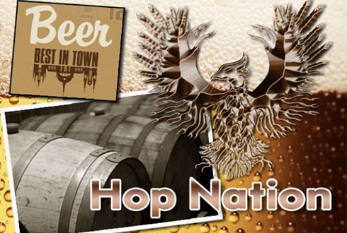 Hop Nation Brewing Co.